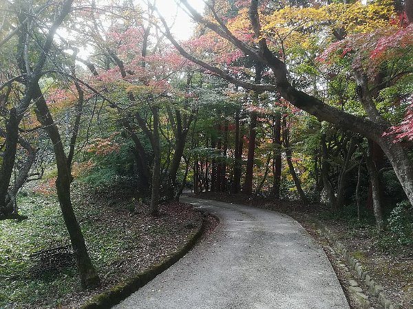 konomiyajnjya-shiga-052.jpg