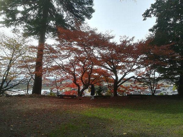 konomiyajnjya-shiga-074.jpg