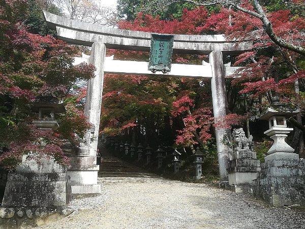 konomiyajnjya-shiga-080.jpg