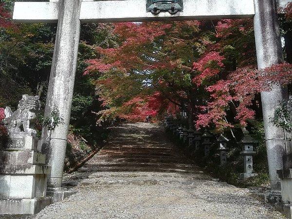 konomiyajnjya-shiga-084.jpg