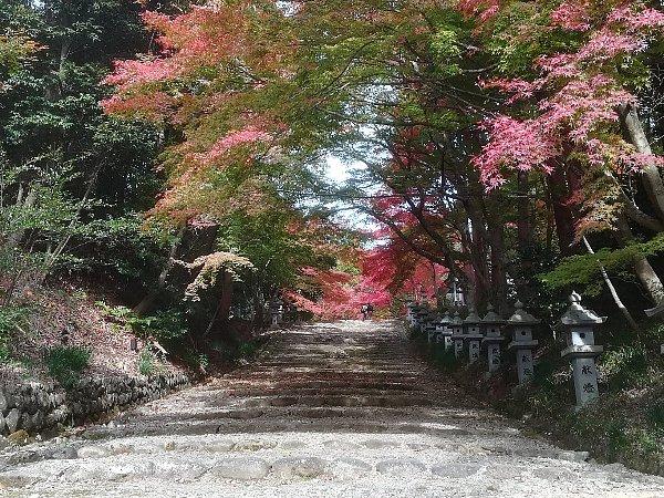 konomiyajnjya-shiga-086.jpg