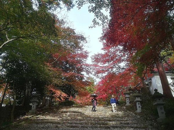 konomiyajnjya-shiga-096.jpg