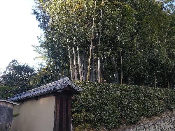 koutouin-konanshi-033.jpg