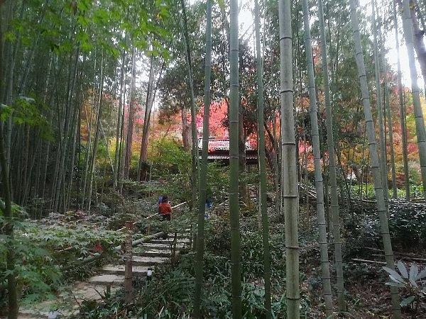 kyorinbo-shiga-025.jpg