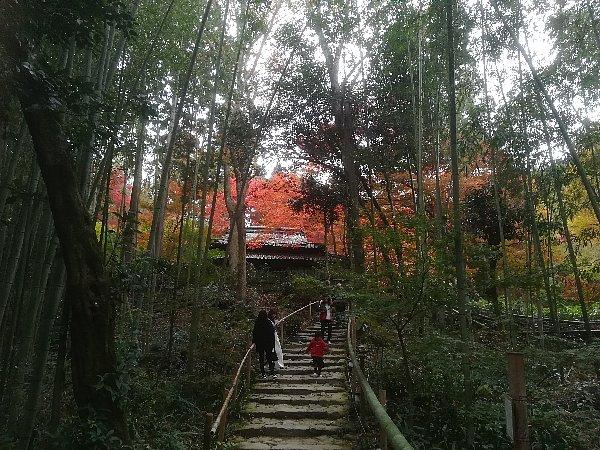 kyorinbo-shiga-027.jpg