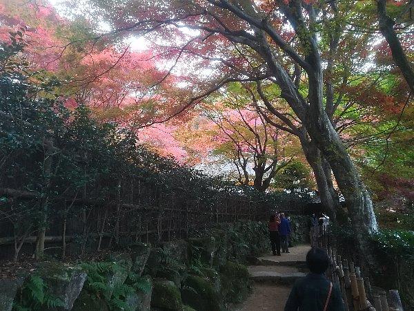 kyorinbo-shiga-029.jpg