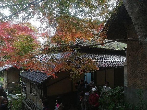 kyorinbo-shiga-038.jpg