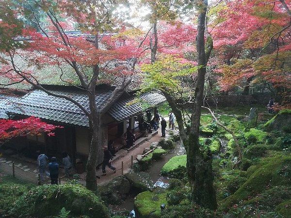 kyorinbo-shiga-048.jpg