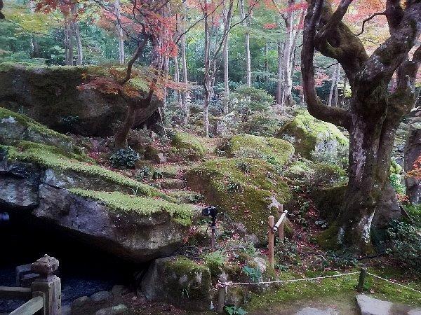 kyorinbo-shiga-067.jpg