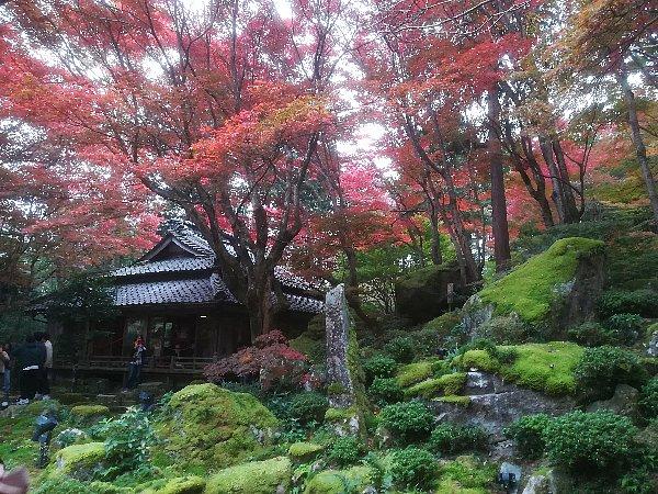 kyorinbo-shiga-078.jpg