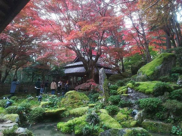 kyorinbo-shiga-080.jpg