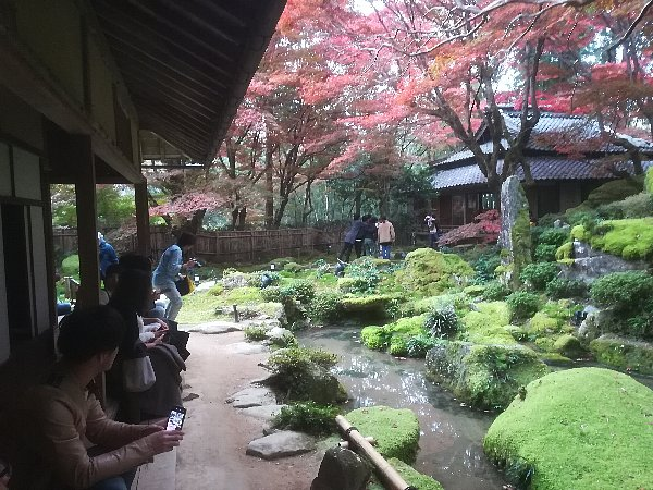 kyorinbo-shiga-081.jpg