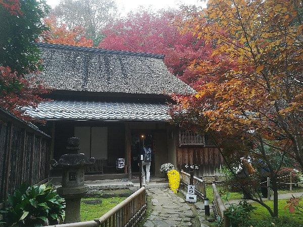 kyorinbo-shiga-088.jpg