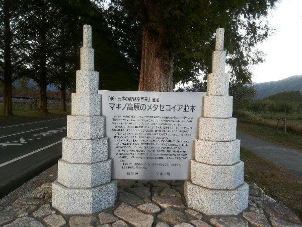 metasekoiya2-makino-029.jpg