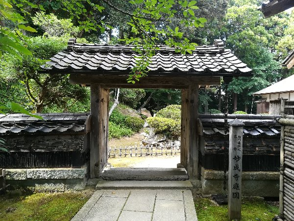 myojyoji-hakui-101.jpg