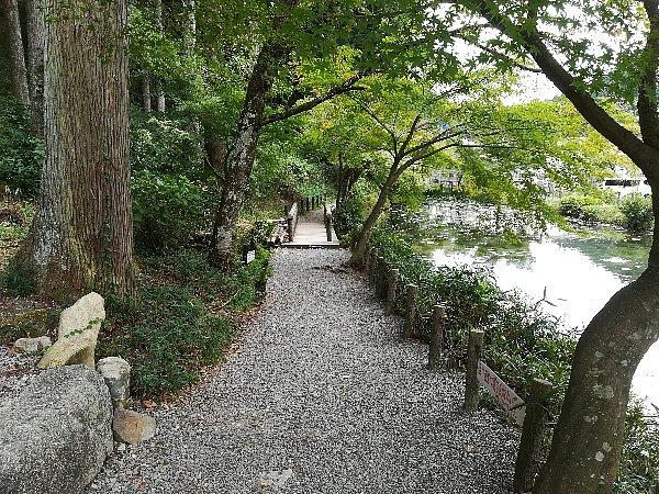 nemichijnjya-seki-006.jpg