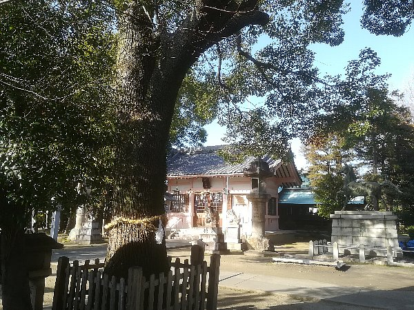 oomiwa-ichinomiya-025.jpg