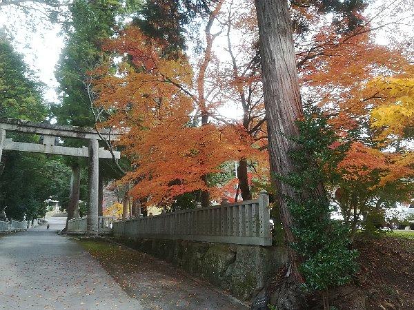 ootakijnjya-shiga-021.jpg