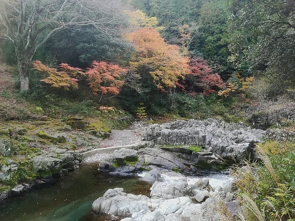 ootakijnjya-shiga-039.jpg