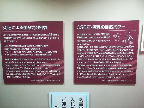 parkazai2-nagahama-003.jpg
