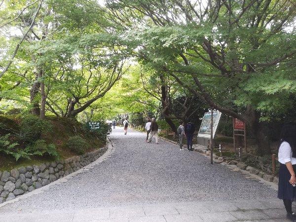 ryoanji-kyoto-016.jpg