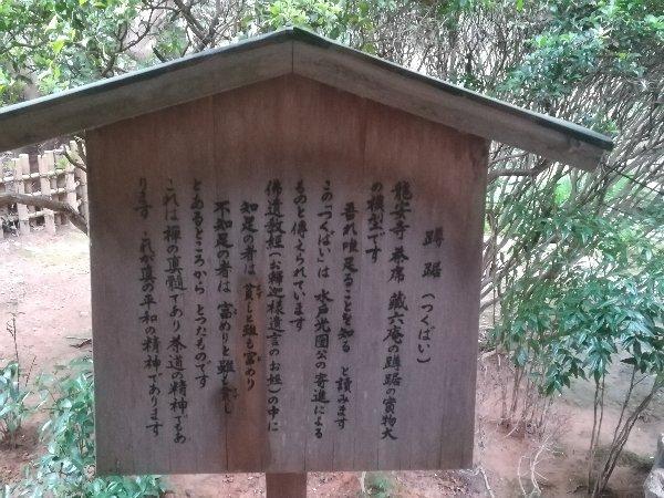 ryoanji-kyoto-060.jpg