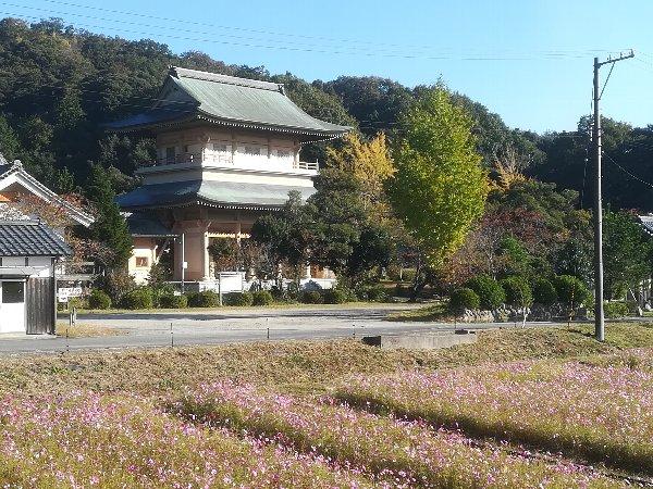 saifukugi3-tsuruga-005.jpg
