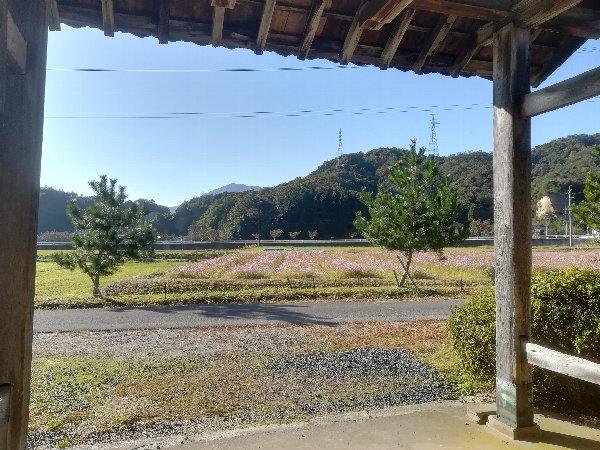 saifukugi3-tsuruga-040.jpg