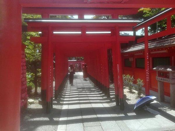 sankouinari-inuyama-006.jpg