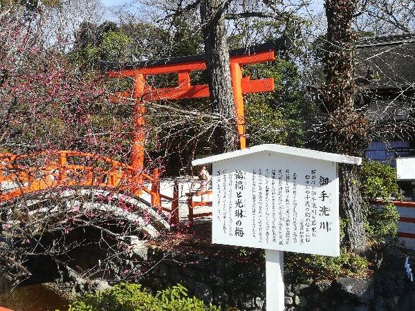 shimogamo2-kyoto-065.jpg