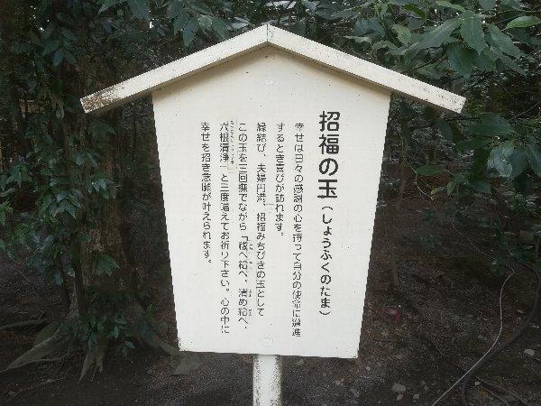 tsubakiooyashiro-suzuka-048.jpg