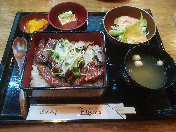 uesaka-fukui-031.jpg