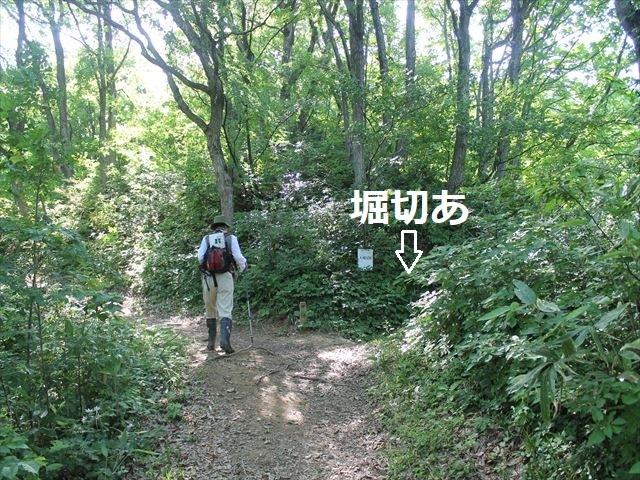 鮫ヶ尾IMG_3690