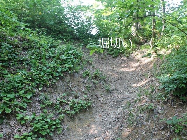 鮫ヶ尾IMG_3695