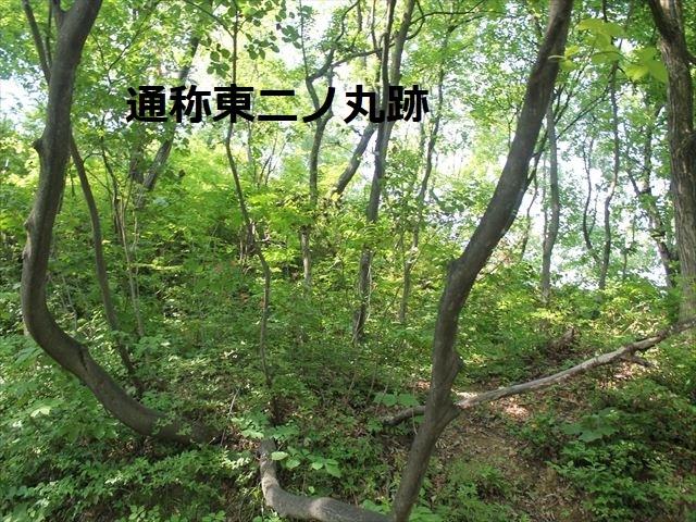 鮫ヶ尾IMG_3701