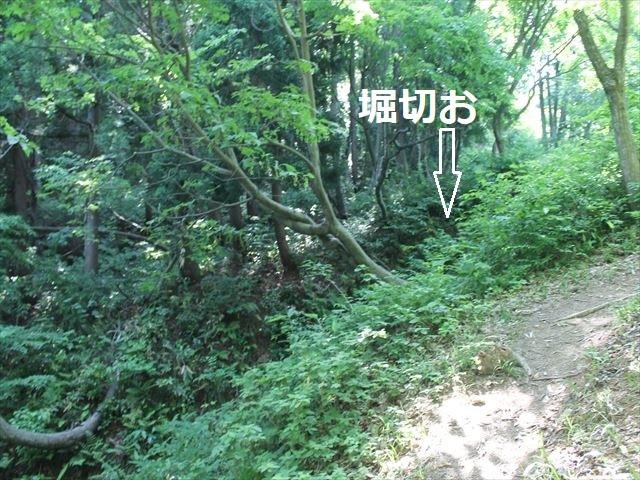 鮫ヶ尾IMG_3705