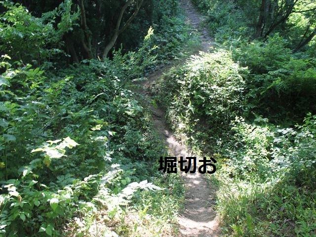 鮫ヶ尾IMG_3707