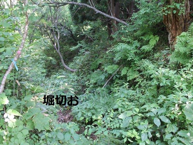 鮫ヶ尾IMG_3709