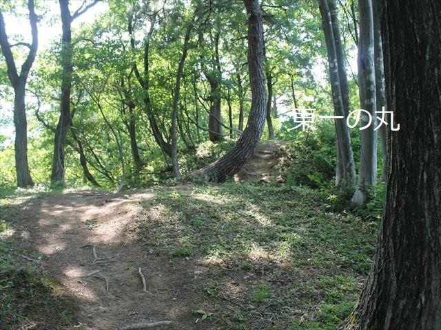 鮫ヶ尾IMG_3714