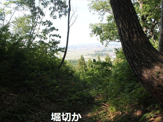 鮫ヶ尾IMG_3715