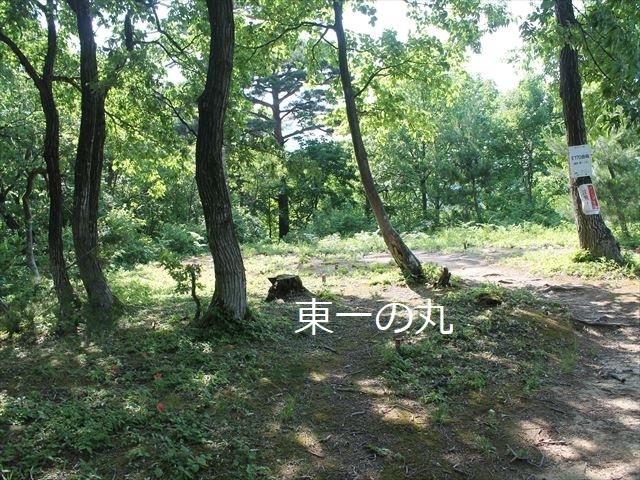 鮫ヶ尾IMG_3716