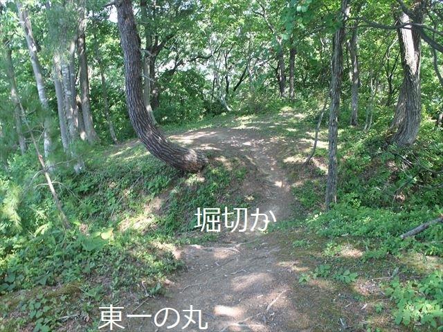 鮫ヶ尾IMG_3717