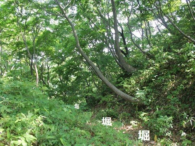 鮫ヶ尾IMG_3724