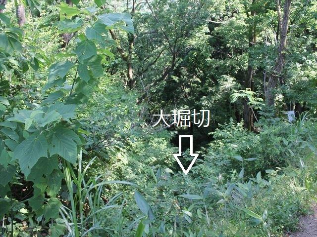 鮫ヶ尾IMG_3729