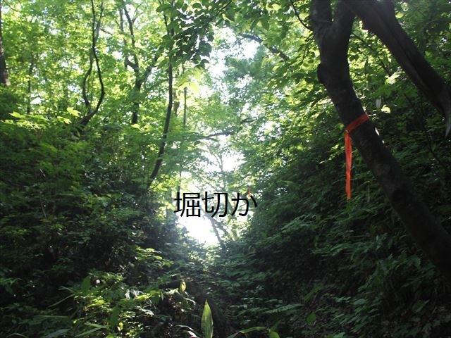 鮫ヶ尾IMG_3732