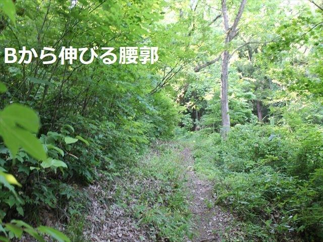 鮫ヶ尾IMG_3737
