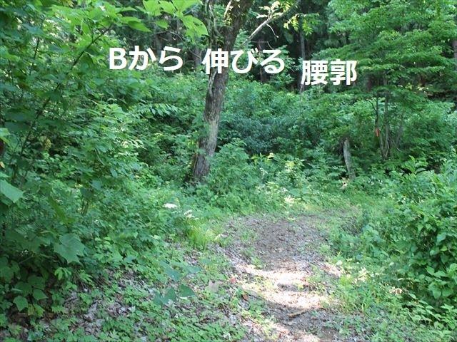 鮫ヶ尾IMG_3738