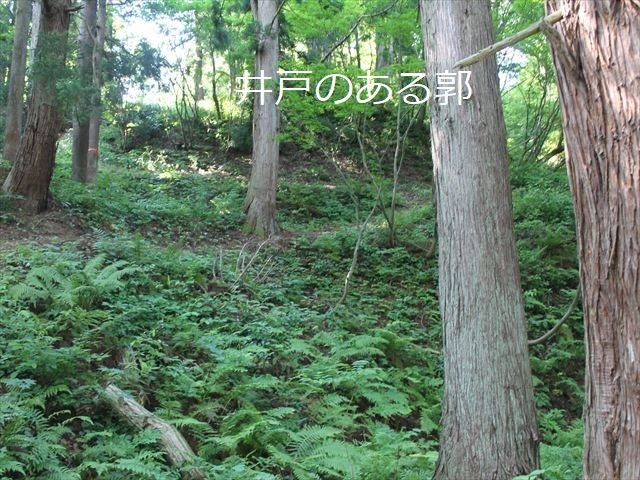 鮫ヶ尾IMG_3751