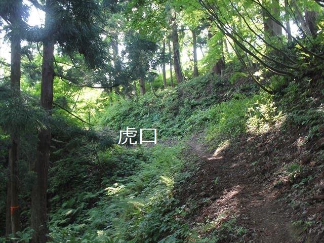 鮫ヶ尾IMG_3753
