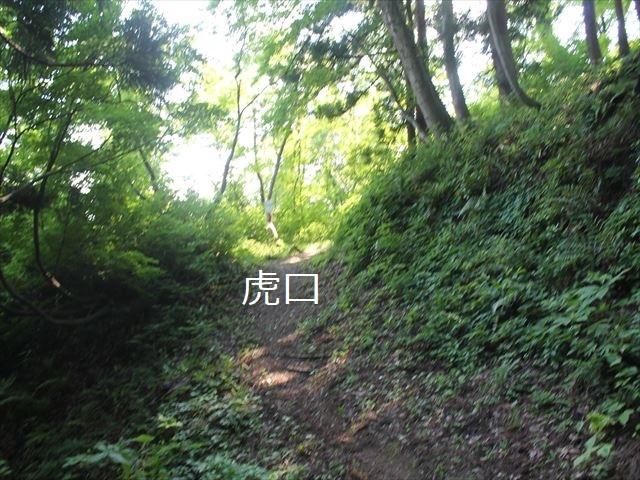 鮫ヶ尾IMG_3754